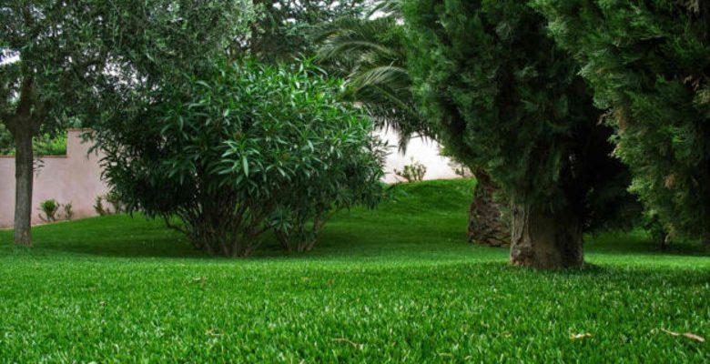 Embellir son jardin avec du gazon artificiel de qualité supérieure